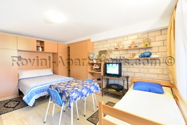 Villa Mattossi - Studio - apartment 1