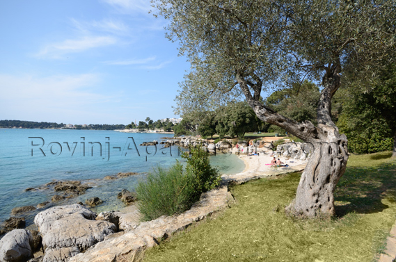 Golden Cape forest park in Rovinj - 3